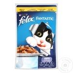 Hrana pentru pisici Felix Pui 100g