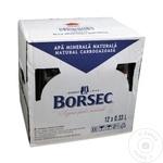 Apa minerala carbogazoasa Borsec sticla 12x0,33l