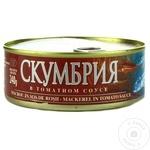 Скумбрия Blue Morina в томатном соусе 240г