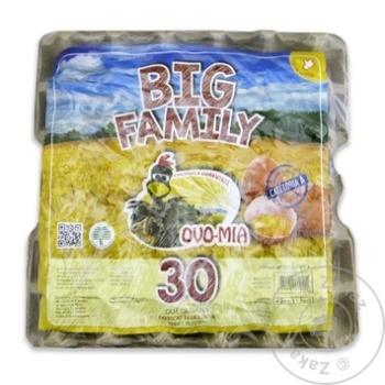 Oua de gaina Big Family 30 buc - cumpărați, prețuri pentru Metro - foto 1