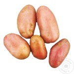 Cartof roz MD
