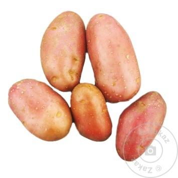 Cartof roz MD kg - cumpărați, prețuri pentru Metro - foto 1