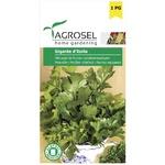 Seminte de patrunjel gigant Agrosel 4g