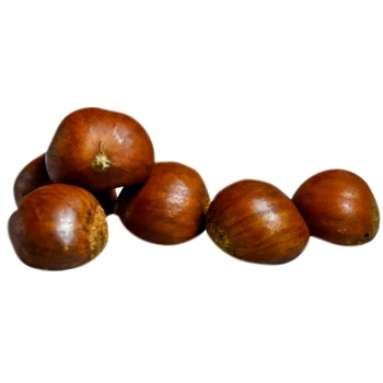 fructe de castan de la varicoză)