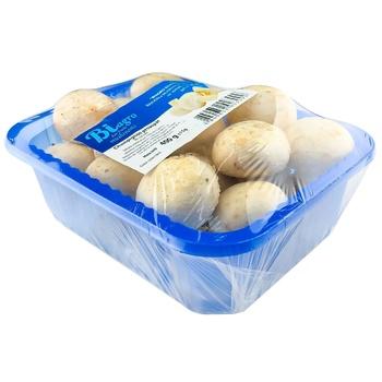 Ciuperci Champignon 400g - cumpărați, prețuri pentru Metro - foto 2