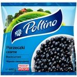 Coacaza neagra Poltino 400g