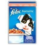 Hrana pisici Felix somon 100g
