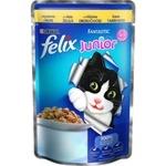 Hrana pentru pisici Felix junior pui 100g