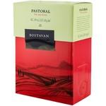 Vin Pastoral Bostavan rosu dulce bag in box 2L