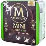 Magnum Mini clas/mint/dark 6x55ml