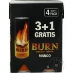 Bautura energizanta Burn Mango 0,25l x 4buc - cumpărați, prețuri pentru Metro - foto 3
